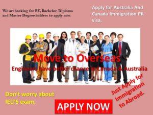 Free Immigration Visa assessment form