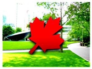 Canada Express Visa